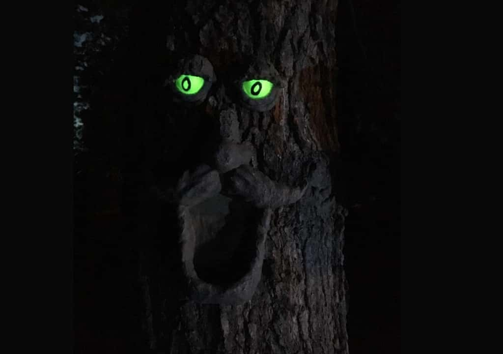 A tree glowing with Glow in the dark paint for wood