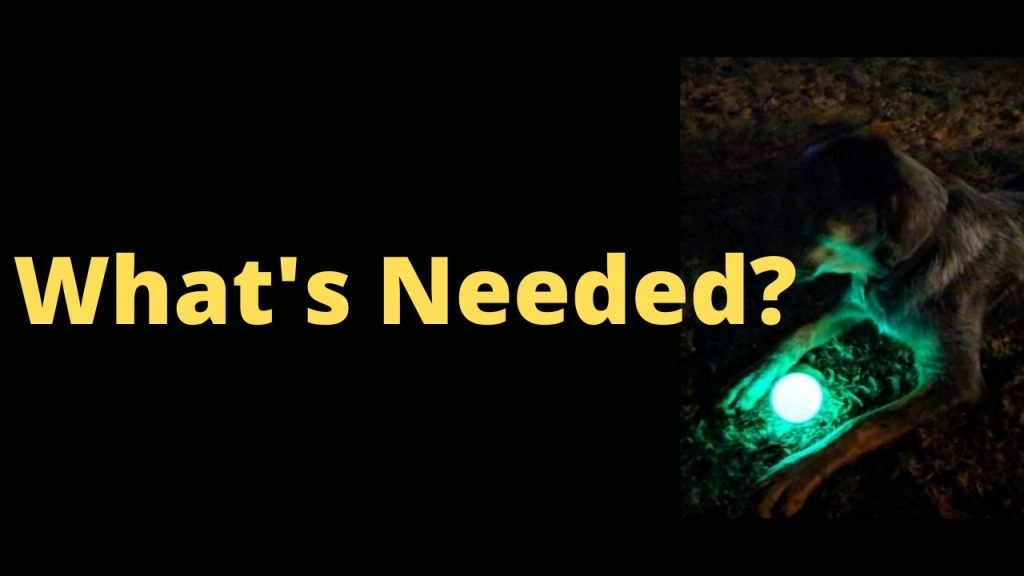 Top 3 Glow Ball For Dogs of this year- Glow in Dark